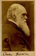 Año Darwiniano
